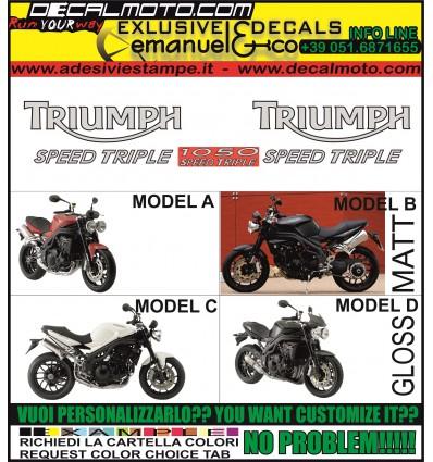 SPEED TRIPLE 1050 2008 2010