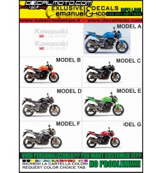Z 1000 2004 - 2006