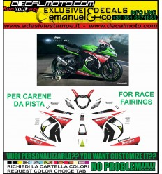 ZX 10 R NINJA 2011 - 2015 REPLICA SBK 2013 WORLD CHAMPIONS CARENE PISTA