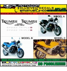 955i SPEED TRIPLE 2000 2001