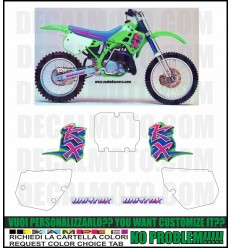 KX 250 1991