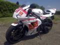 kit stickers cbr replica team gresini per michele
