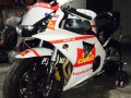 kit stickers cbr replica team gresini per francesco russo