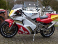 kit stickers personalized RGV 250 Gamma Replica Lucky for Holger von Knockenberge from Nederland