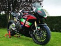 kit stickers CBR Replica Castrol for Dimitri Borianne from France